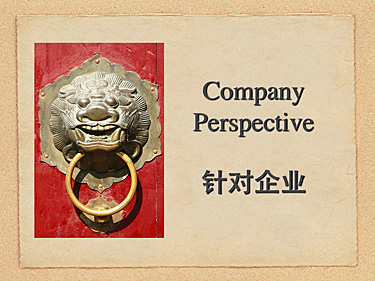 Company-web